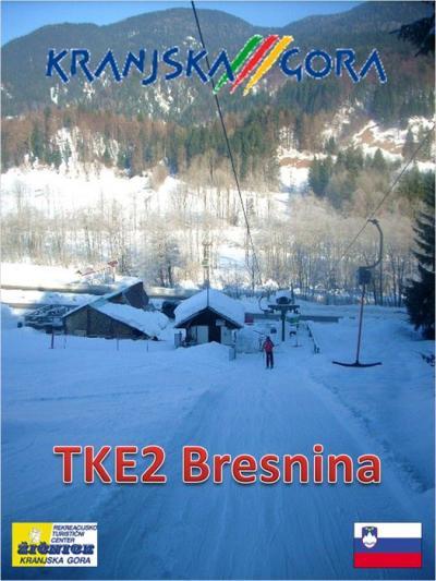 Bresnina