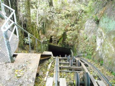 Scenic Railway (The Mountain Devil)