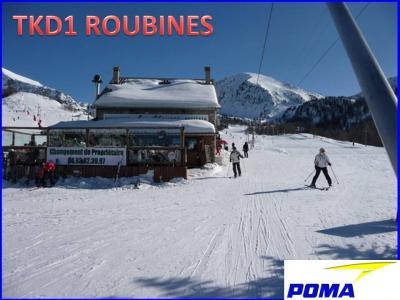 Roubines