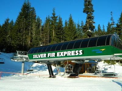 Silver Fir Express