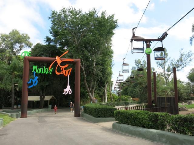 Sky Zoo