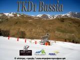 TKD1Bassiabanniere.jpg