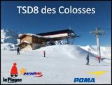 Colosses