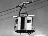 cabinechariot.jpg