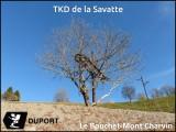 TKD de la Savatte.jpg