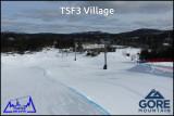 TSF3 Village.jpg