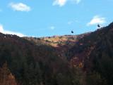 Vue haut Combe du Boulangeard